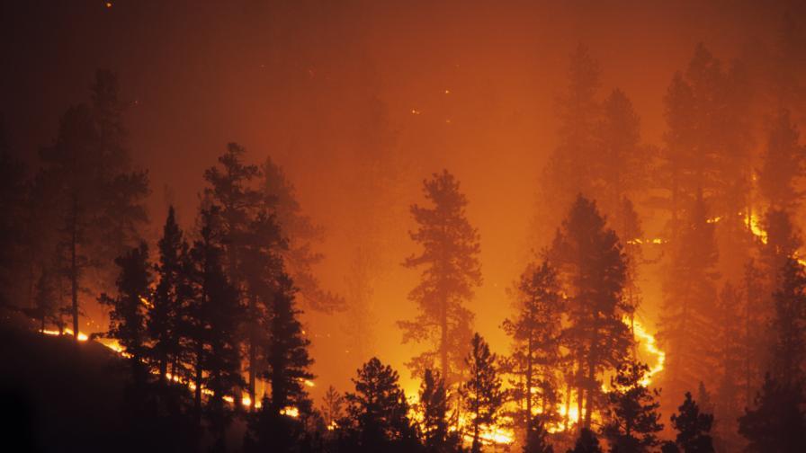 Големи пожари избухнаха на гръцките острови Евия и Крит
