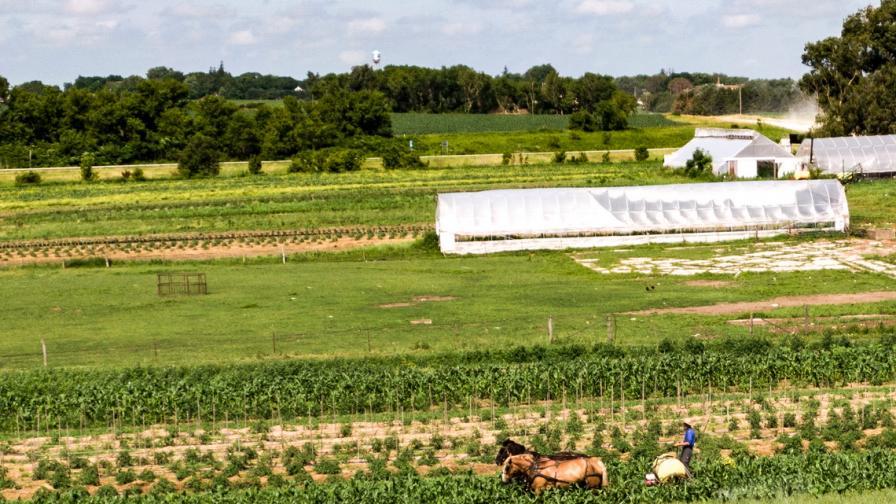 Автентична ферма на Амиши