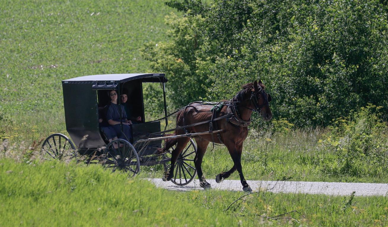 <p>Един от символите на амишите &ndash; черната карета. Много от амишите не ползват коли.</p>