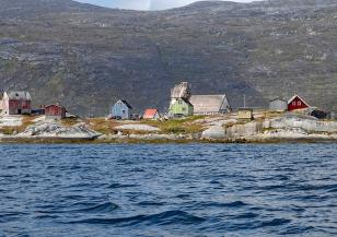 Край Гренландия са открити корали