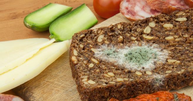 Любопитно Мухлясала храна: Какво се случва с тялото ни, ако