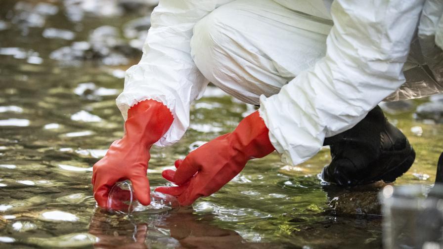 """Отровите във водите на Марица дошли от """"Неохим"""" АД, установи проверката"""
