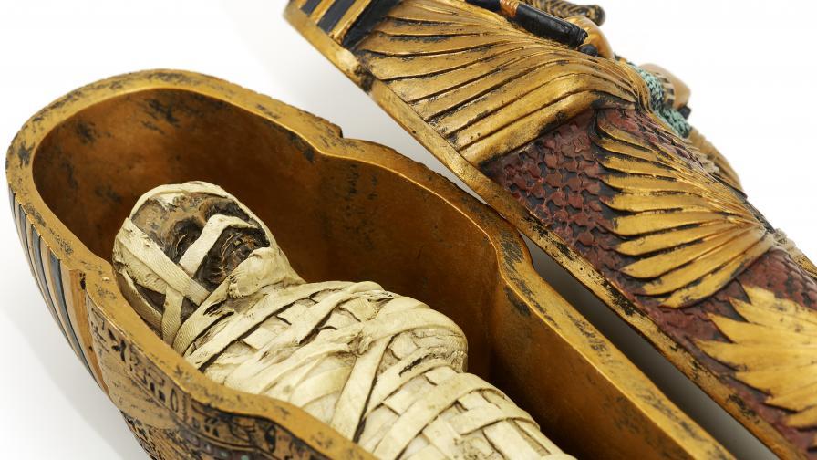 Тези две миниатюрни мумии оставиха изненадани археолозите