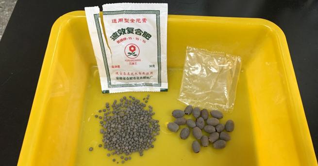 Свят Мистериозни семена пристигат от Китай по пощата Това се