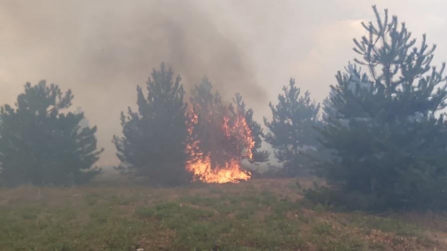 Пожарът в Хасковско обхвана почти 100 000 дка площ