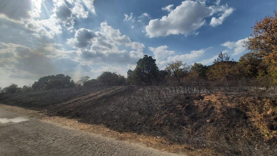 Пожарът в Свиленградско
