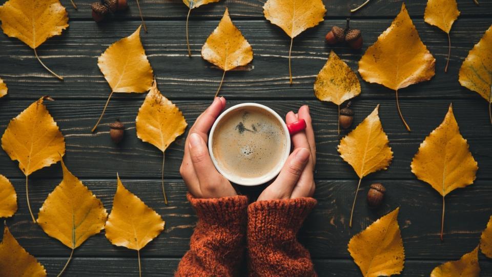 есен уют кафе сутрин листа