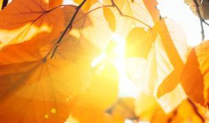 Горещини през октомври? Какво време ни очаква