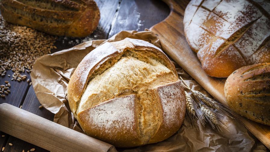 Как се е появил първият хляб? И с какво са се хранели преди 8 000 години