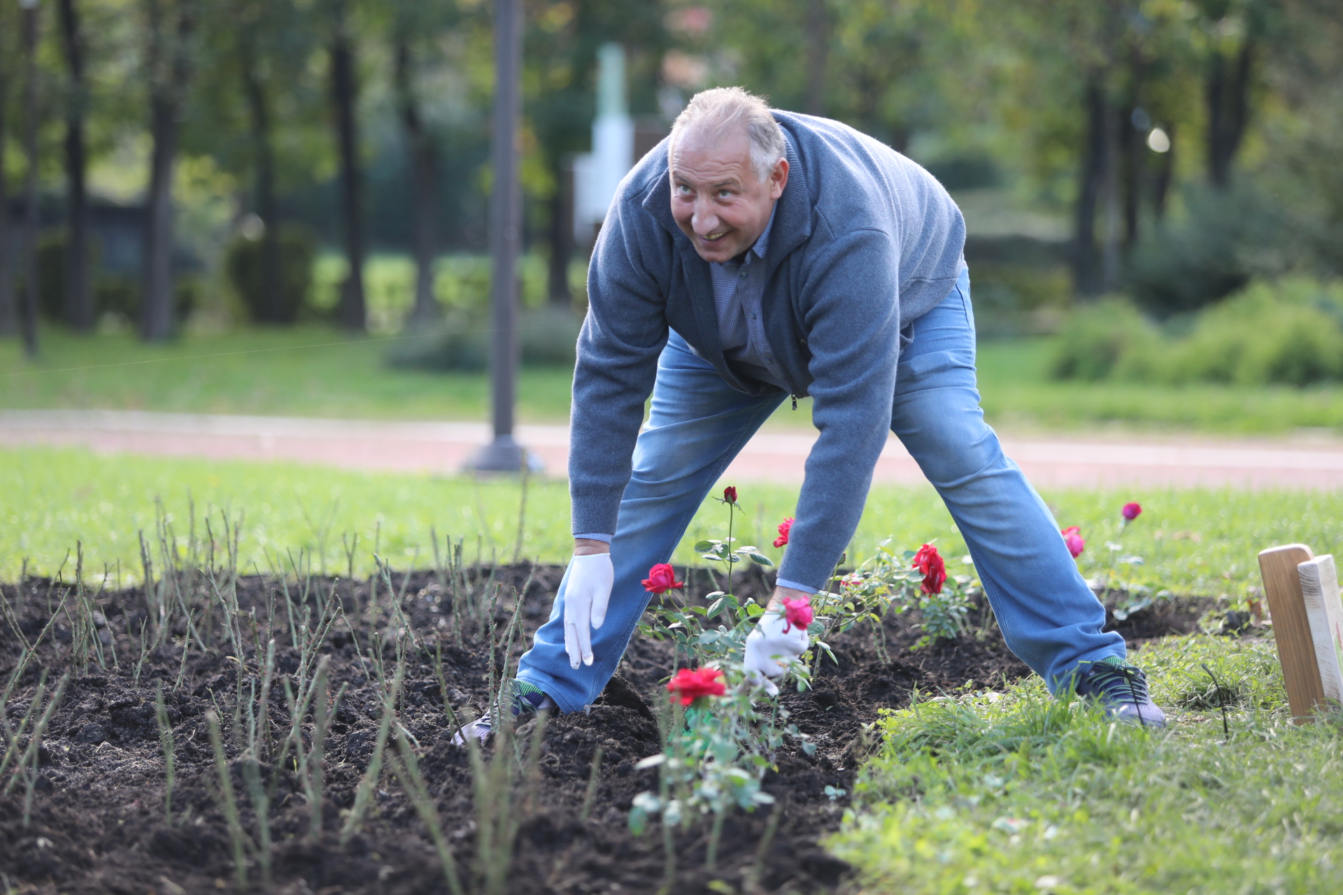 <p>Розова градина в знак на почит към донорите и техните семейства НДК</p>