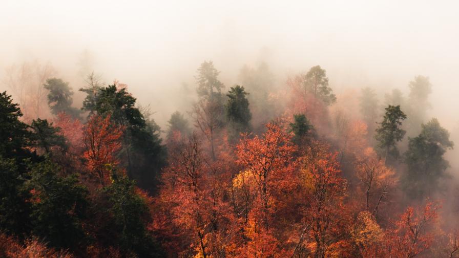 Мъгла, но и слънце днес, кога се очакват валежи