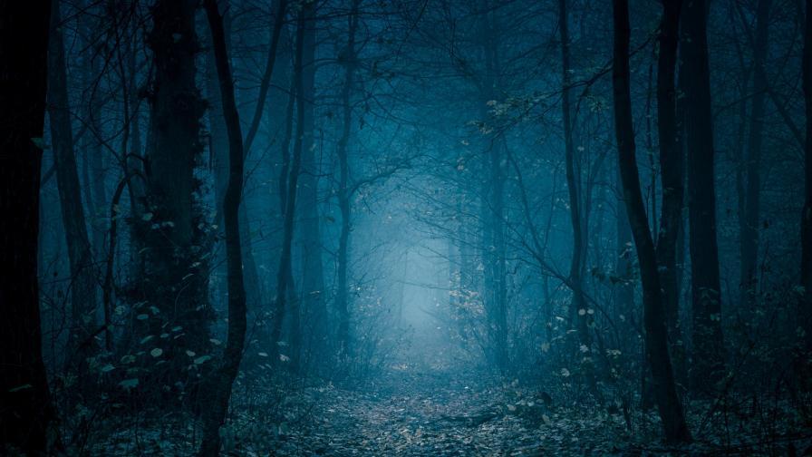 <p>Зловещите гори, от които ще ви побият тръпки</p>