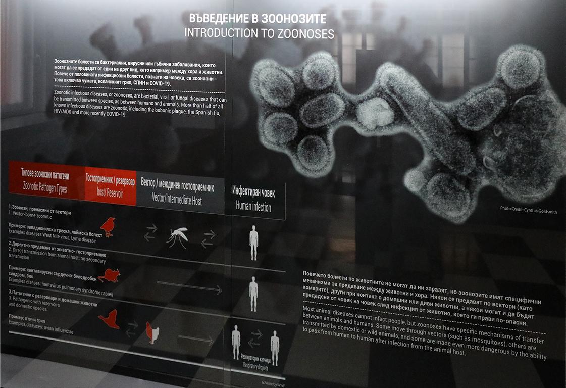 <p>За значението на тяхното изучаване може да съдим по факта, че повече от половината инфекциозни болести, познати на човека, са зоонозни.</p>