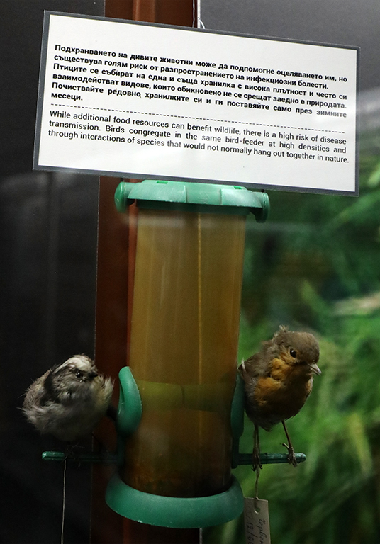 <p>Опазването на дивите местообитания и приемането на нови закони за земеползване, които да контролират присъствието на хора в естествените хабитати, са част от такива мерки.</p>