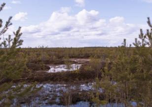 Мистерията на сибирските кратери