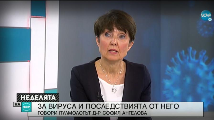 София Ангелова