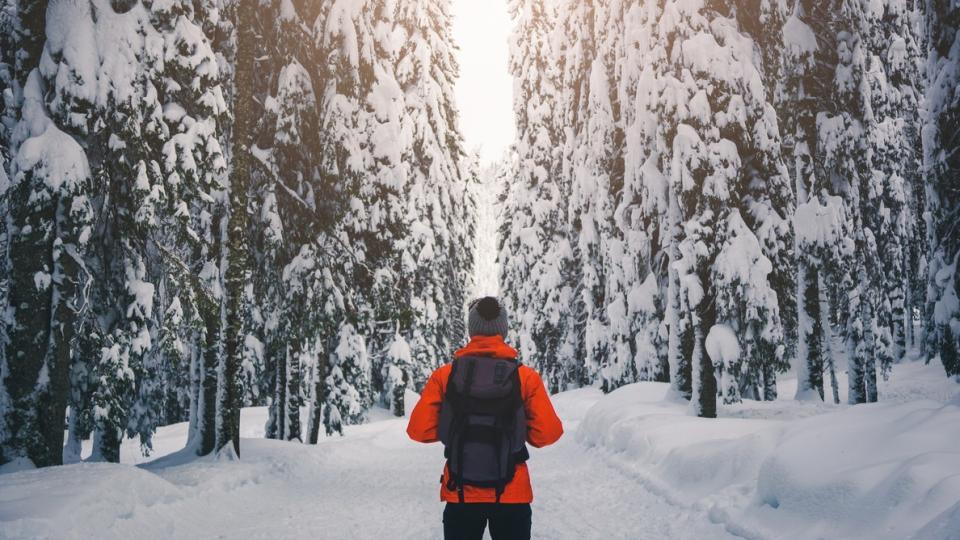 мъж зима сняг разходка природа студ