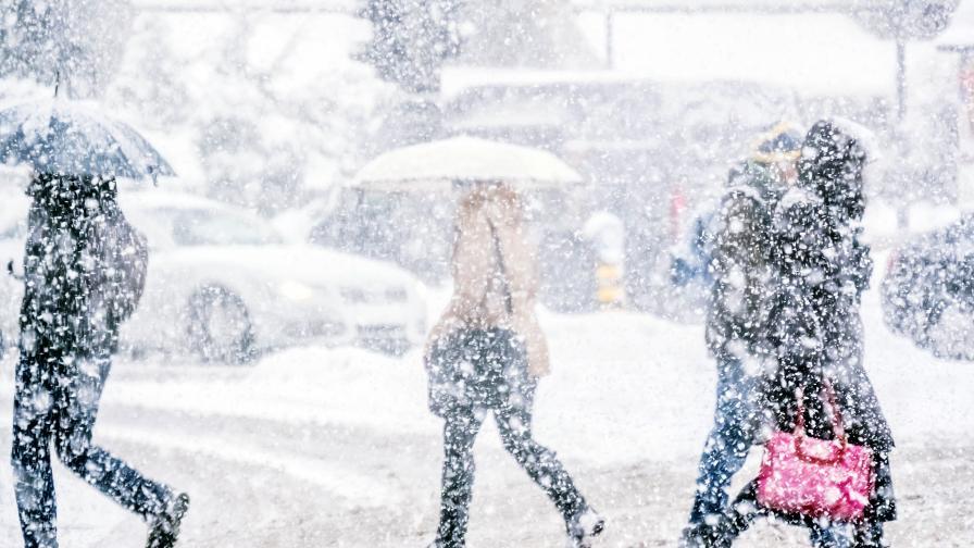 Снежно бедствие удари Германия и Нидерландия