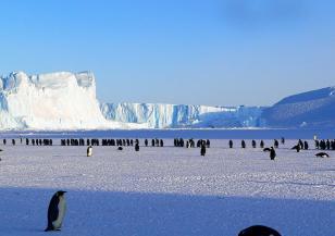 Огромен антарктически айсберг се е разцепил на две
