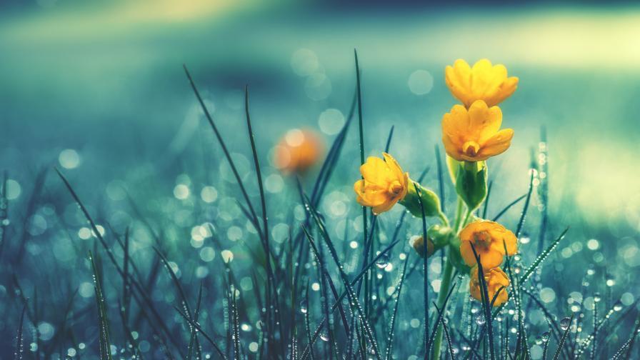 Интензивни валежи в страната, условия за градушки