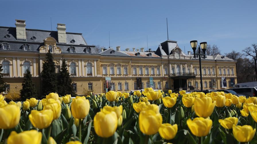 София в пролетна премяна