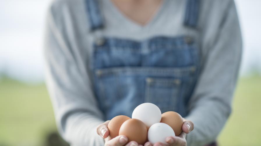 Много ви се ядат яйца? Тялото иска да ви каже нещо