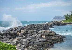 Кораловите рифове край Хаваи са застрашени от поройните дъждове
