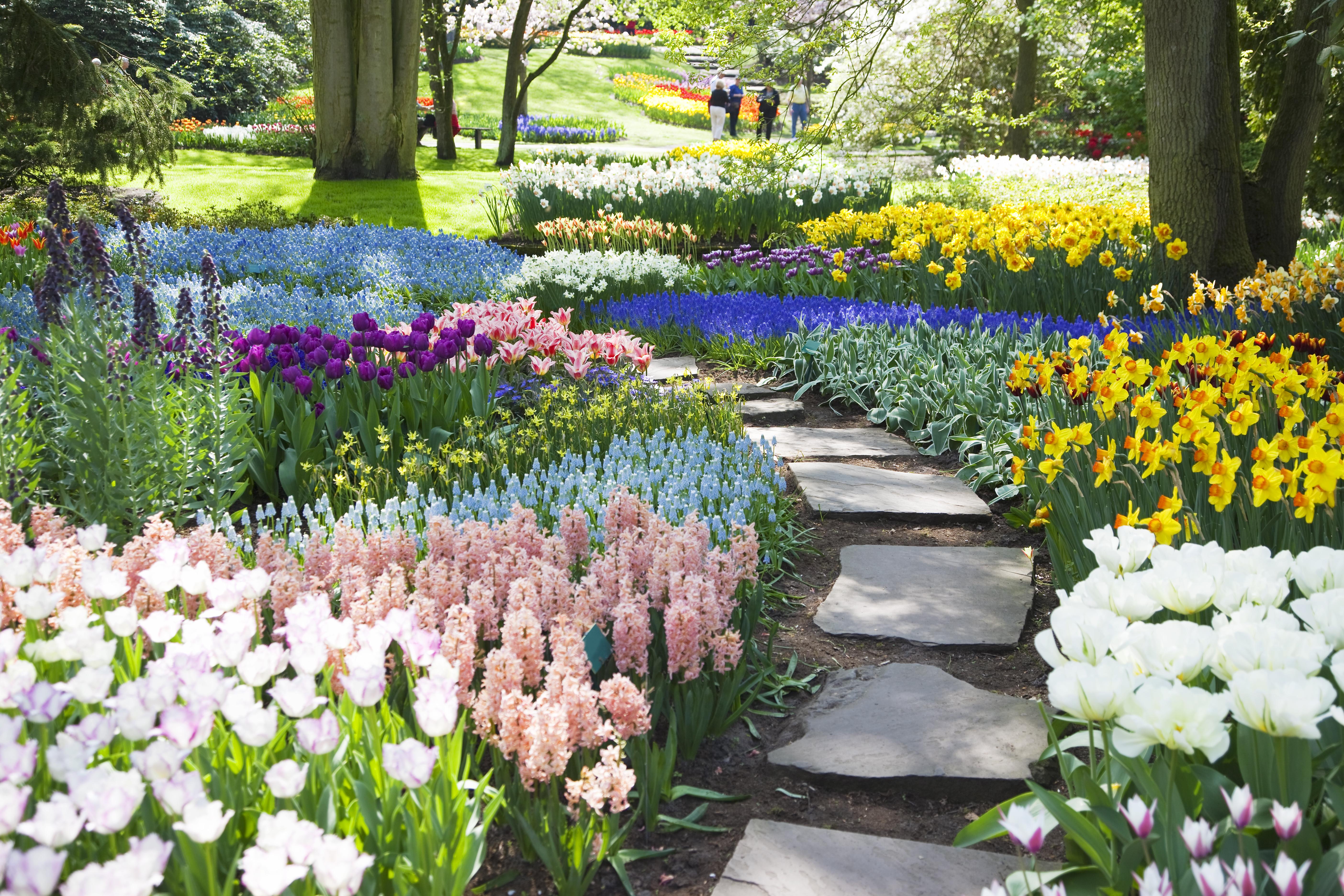 <p><strong>Невероятна ботаническа градина</strong></p>  <p>Отпуснете се в Аламеда - малка, но красива ботаническа градина с растения от цял свят.</p>
