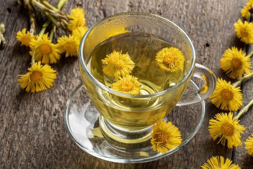 <p><strong>Подбел</strong><br /> Цветовете на това растение се събират през май, като се използват за чай и настойка. Помага при лечение на остри респираторни вирусни инфекции, грип, настинки.</p>
