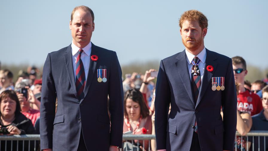 Уилям и Хари коментираха скандала с интервюто с Даяна
