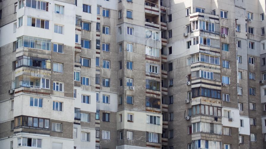 Брутална агресия: Мъж хвърли домашния си любимец от 6-ия етаж