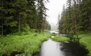 Древни и красиви: 10 невероятни гори по света