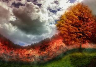 Рекордно количество въглеродни емисии от горските пожари в Якутия