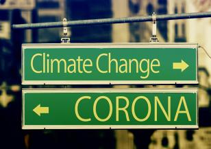 Може ли глобалното затопляне да пробуди опасни вируси