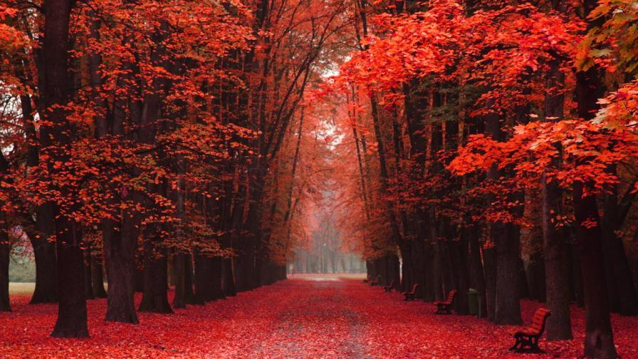 есен гора