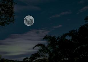 Могат ли фазите на Луната да влияят на съня