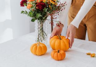 Време за... есенно почистване