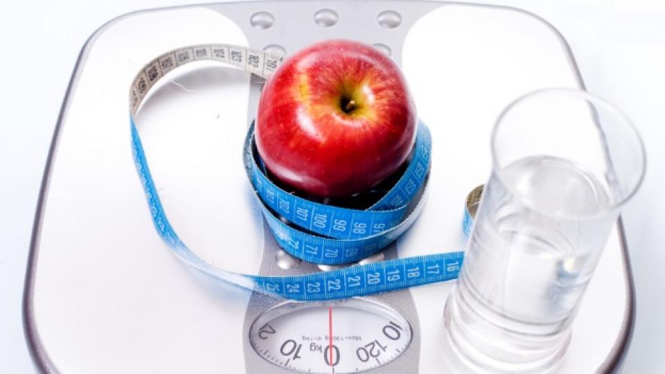Как да изберем правилната диета