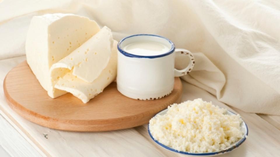 Овчето мляко е по-богато на мазнини, белтъчини и калций от кравето