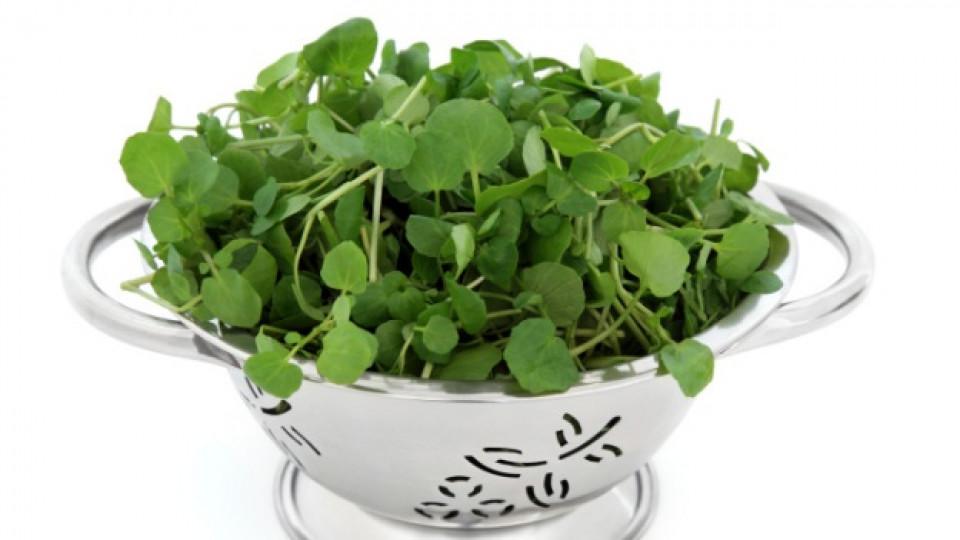 Още един полезен и вкусен зеленчук
