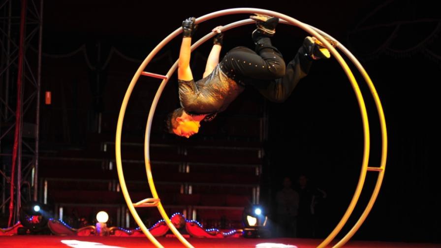"""Цирк """"Балкански"""" показва дресура на патици и тюлени за първи път"""