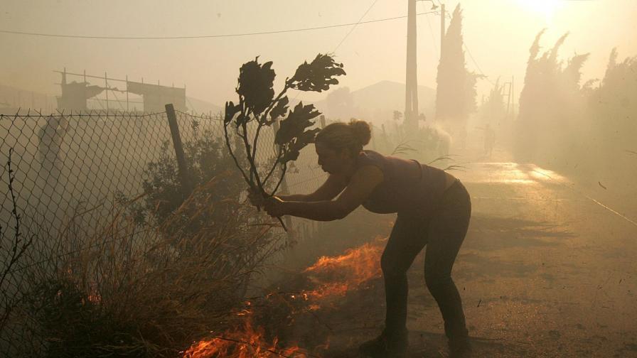 Пожарите край Атина = екокатастрофа