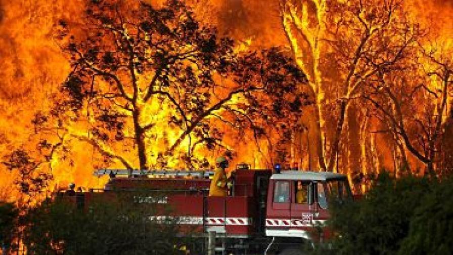 Огромни пожари отнеха живота на над 180 души в Австралия през февруари
