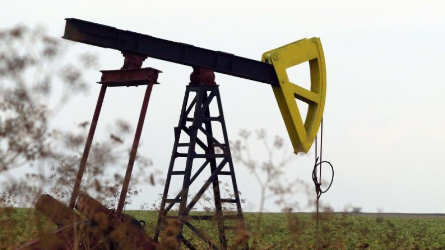 Търсим нефт и край Враца