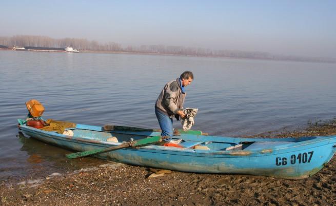 В Дунав се появи китайски поспаланко
