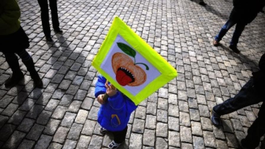 ЕК разреши ГМО картофи в Европа, но не за ядене