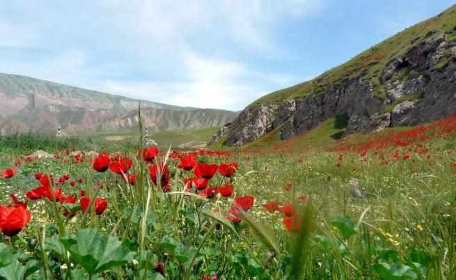 Откриха съкровище от полезни изкопаеми в Афганистан