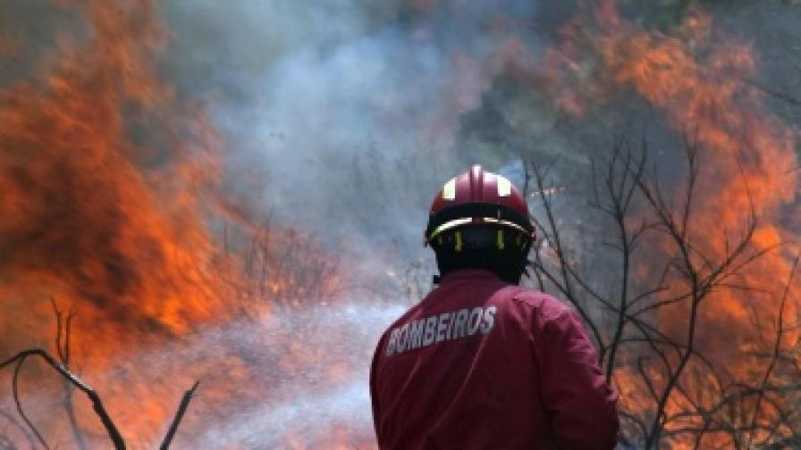 Горски пожари бушуват в Португалия