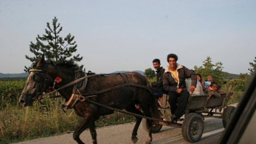 """""""Тагесцайтунг"""": Кучешкият живот на ромите"""