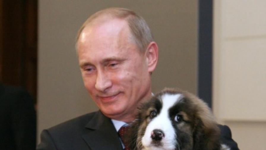 Путин пита руснаците как да си кръсти кучето